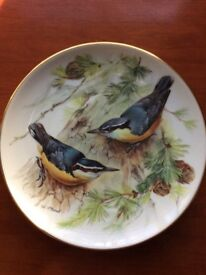 'Sitta Whiteheads' - A Lovely Porcelain Plate in the Songbirds of Europe series by Ursula Band