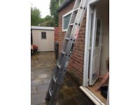 Ladder double twelve rung from wicks very good condition fifty pounds