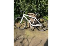 Saracen Urban Myth hybrid bike medium.