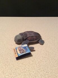Leatherback Turtle Endangered Animals McDonalds Soft Toy 2008