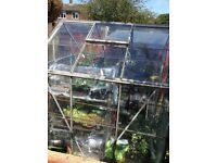 6ft x 6ft used greenhouse.