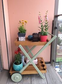 Tea Trolley for outdoor plants