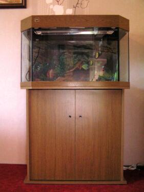 juwel aquarium panorama 80 inkl zubeh r in brandenburg potsdam aquarium und. Black Bedroom Furniture Sets. Home Design Ideas