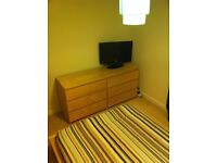 Double Room in Penthouse Flat over looking Firth