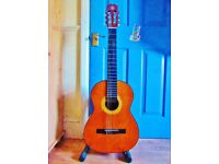Would you like Classical Guitar Lessons?