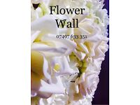 Wedding Flower Wall ** Chair Covers & Sashes Hire** Chair Covers & Sashes Hire