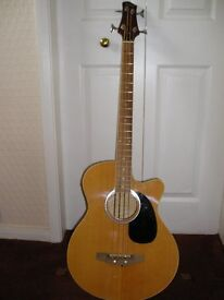 Electric acoustic bass with hard case.