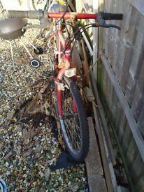 Vertigo women's bicycle *in need of light repair*