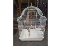 Medium size bird cage with all essential accessories