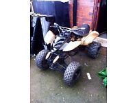 Custom 125cc Kawasaki quad geared