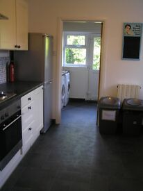 Single room available in student property August 2017