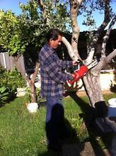CHRIS'S HANDYMAN SERVICES *CALL OR TXT Burwood Burwood Area Preview