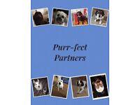 Purr-fect Partners. Dog walking & Pet services.
