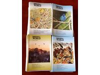 Birding World 71 Issues - Good Condition