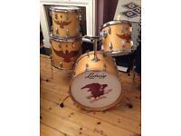Ludwig 75th Anniversary Drum Kit Very rare Kit