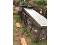 Chickens and chicken coop! make me an offer!
