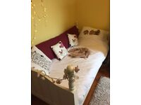 Single bed in antique white solid wood and mattress