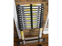 Wanted Telescopic Ladder