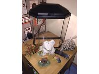 25L Fish tank, accessories and cleaning supplies