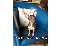 Dog walker, housekeeper - offered