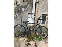 Bicycle for free