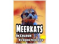 Meerkats Picture Ebook Kindle Edition
