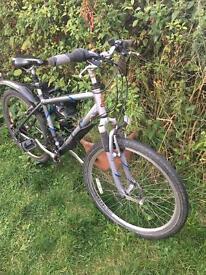 Raleigh unisex bike