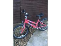 Used 20 inch Raleigh bike