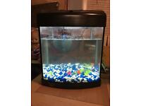 28 litre fish tank with stringray underwater filter