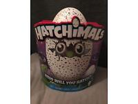 Hatchimals Draggles Purple Egg (Brand new in box)