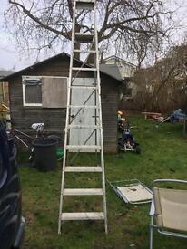 Large step ladder