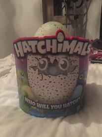 Green Hatchimal