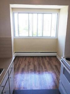 Saint-Laurent 1 Bedroom Premium Plus (3 1/2) Apartment for...