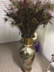 Peacock feathers in large vase