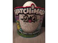 Hatchimals Pengualas Teal Egg (Brand new in box)