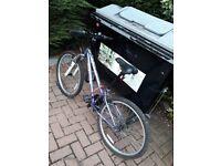 teenage bike for sale