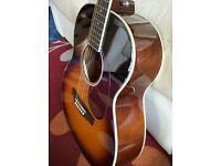 Ashton OM24TSB Acoustic Guitar .