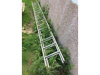 Trade extension ladder 7.32m