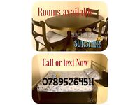 BEAUTIFUL ROOMS AVAILABLE IN SHIREBROOK FAST MOVE INS