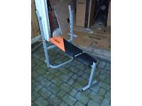 V-fit free weights bench