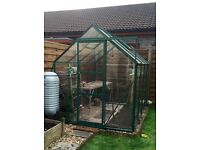Halls 8 x 6 Greenhouse Forest Green (toughened glass)