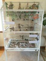 LARGE white flight bird cage!!!