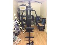 IMMACULATE pro fitness multi gym