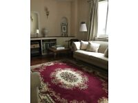 BEAUTIFUL WINE RED PERSIAN-STYLE ORNATE RUG / CARPET