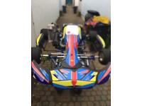 2011 Zing Kart 125 Rotax Max Ready To Race (not, piaggio, gilera, Yamaha)