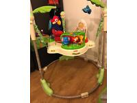 Fisher Price Rain Forest Jumproo