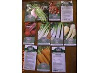 VEGETABLE SEEDS 60% off Garden Allotment Bristol (Oldland Common)