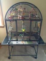 Large Birdcage with all accesories.