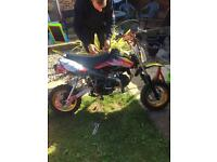 Pitbike xsport 125 160 eater