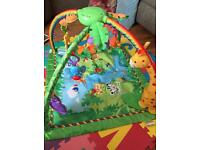 Fisher price rainforest jungle baby gym playmat